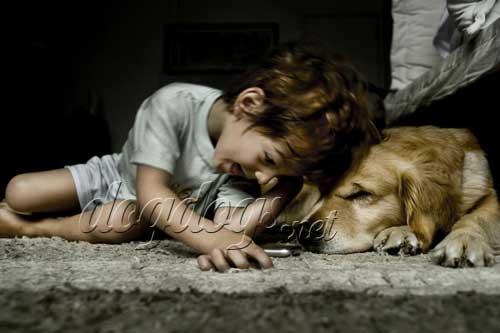 criancas-e-cachorros09