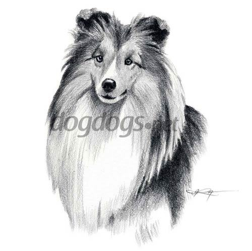 Desenhos Realistas De Cachorros